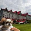 特別な旅行in白馬③ホテルグリーンプラザ白馬
