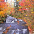 「ラルマナイの滝」の紅葉 !