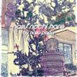 メリクリジュンビ - Christmas Lights