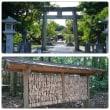 福岡 神社巡り  その2  ホヤホヤ世界遺産  宗像大社