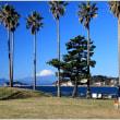 今日の富士山♪