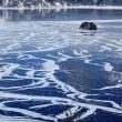 摩周湖が凍った・・!!