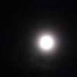 ぼんやりとですが、十六夜の月