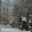 午後の雪の状況