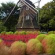 秋の気配in名城公園