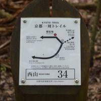まち歩き西0966 京都一周トレイル 西山コース 34