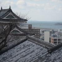 久々に(12~3年ぶり?)和歌山城に