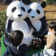 動物園は小さい子も楽しめる