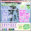 [古事記]第279回【算太クンからの挑戦状2017】(文学・歴史)