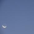 早朝の月と木星とか