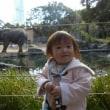 天王寺動物園&やまちゃんのたこ焼き&おチビ♪