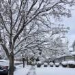 雪景色と「男はつらいよ」