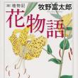 牧野富太郎著「花物語」│あらためて燕子花