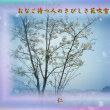 フォト575『 おなご待つ人のさびしさ花吹雪 』zrw1404