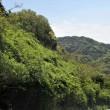 新緑のしまなみ海道・伊予路