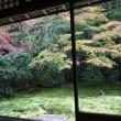 八瀬の紅葉の名所めぐり。雅な紅葉が彩る「瑠璃光院」の秋の公開