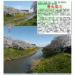 埼玉-616 青毛堀川
