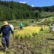 熊野の棚田 田畑の楽校2017 C(9/16~18)