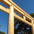A tall torii of Meiji shrine 1