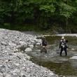 丹波川へ釣り・魚型のハスルアータイプ反りのあるものでマスが釣れる