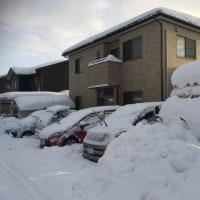 1月14日 やっと雪が止みました。