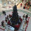 ショッピングモールのツリー☆