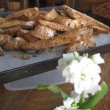 <CANTUCCI(カントゥッチ)>