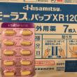 椎間板ヘルニア闘病記①  【発症〜ブロック注射開始  編】