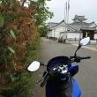 三連休に関宿城まで行ってきた