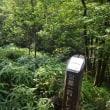 まち歩き西0959 京都一周トレイル 西山コース 30