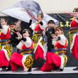 三木さんさん祭り2017 播磨乃國☆よさこい衆嵐華龍神3