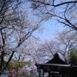 桜御前神社