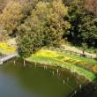 船橋アンデルセン公園を歩く(10月31日)