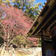 日本平と久能山東照宮