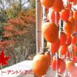 ♪ 秋の夕日に 照る山紅葉 ~