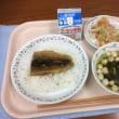 秋刀魚 10月11日