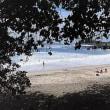 マウイ島ハモアビーチ 2017年GWハワイ旅行記3日目その16