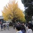 上野の杜で数寄フェス