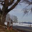 12月の大峰高原
