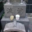 池波正太郎記念文庫から西光寺。
