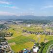 琵琶湖湖岸を見る