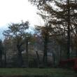 紅葉の旅 河口湖 山中湖