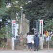 2017.10.10 庄内緑地公園のコスモスと大須観音