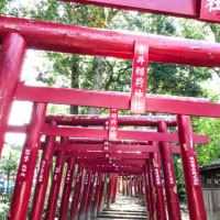 国宝青井阿蘇神社とひとよし温泉。