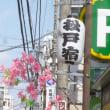 聖徳大学~松戸宿ひみつ堂