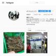 豊洲市場海老の佃林です。Instagram公式アカウントを開設しました。