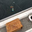 船カワハギ釣行