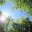 5/24(木)のPACニュース~暮らし&身近な法律・判例の情報