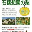 2017 豊水(梨) つがる(リンゴ)