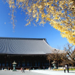 2017 京都の紅葉 西本願寺の銀杏